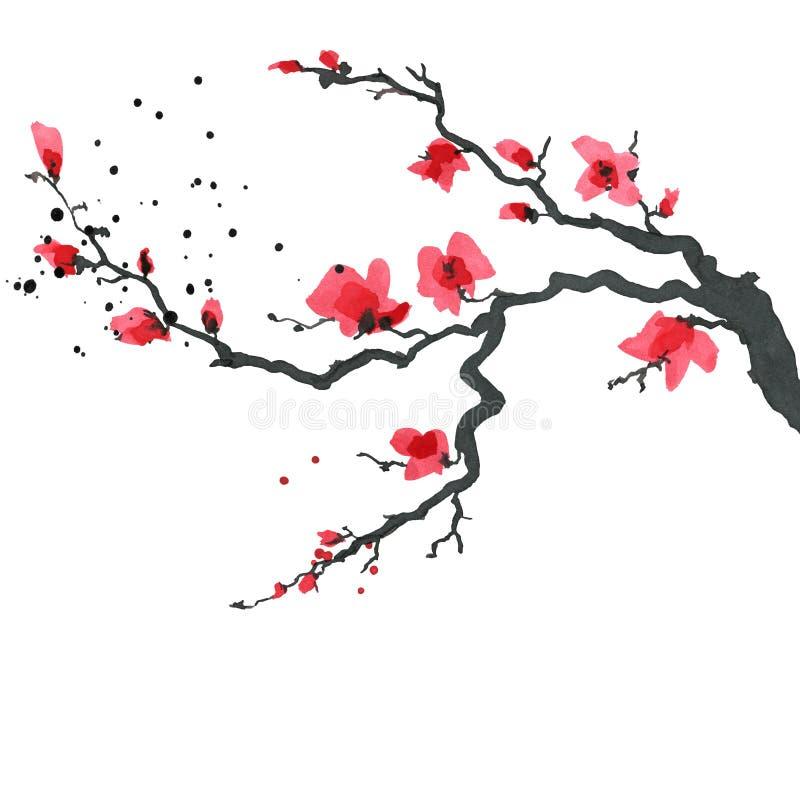 Árbol de Sakura en estilo japonés Ejemplo de la pintura de la mano de la acuarela libre illustration