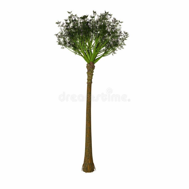 Árbol de Wattieza stock de ilustración