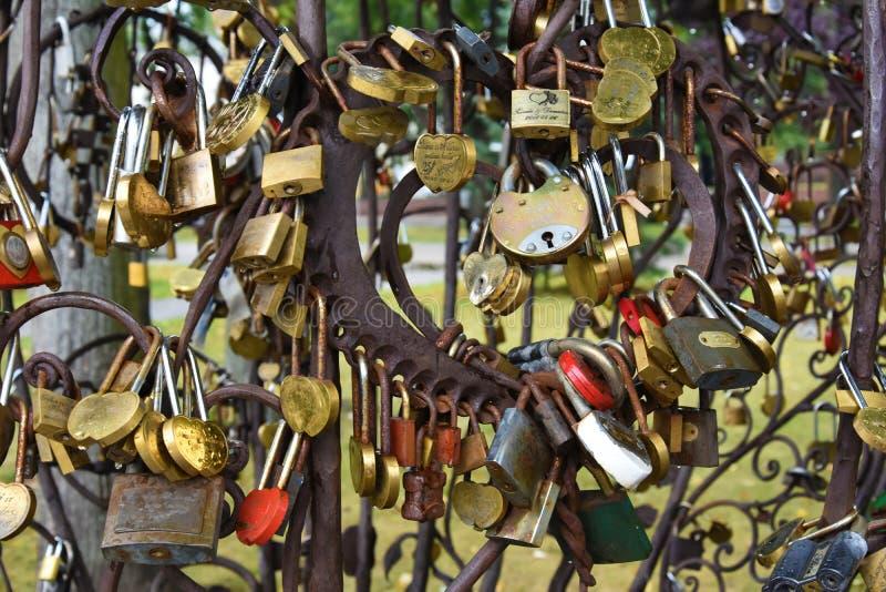 Árbol del amor en Klaipeda, detalle fotos de archivo libres de regalías