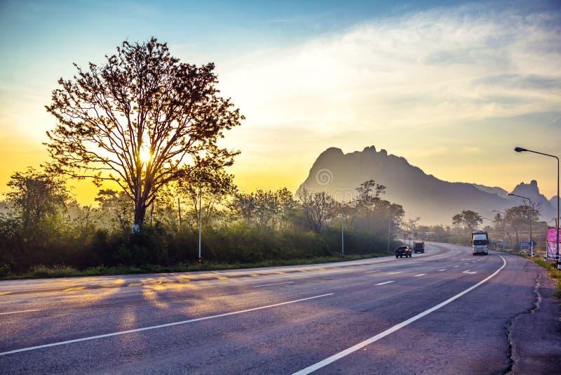 Árbol del borde de la carretera foto de archivo