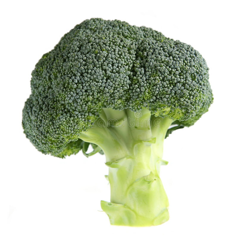 Árbol del bróculi foto de archivo libre de regalías