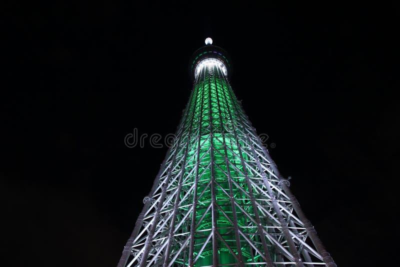 Árbol del cielo de Tokio imagenes de archivo
