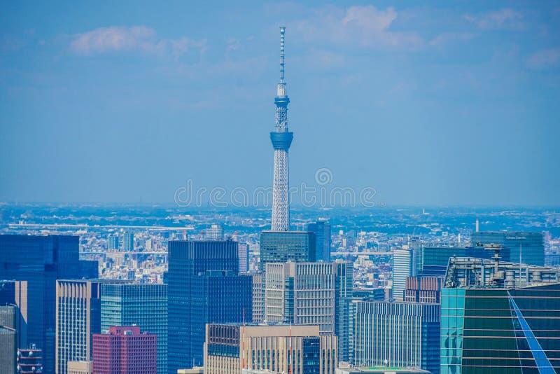 Árbol del cielo de Tokio y paisaje urbano foto de archivo
