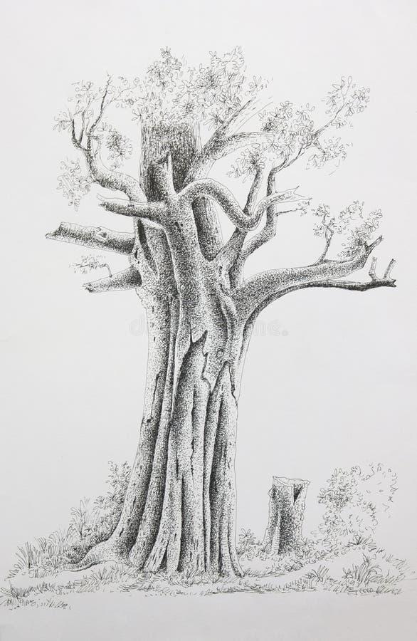 Árbol del drenaje de la mano imagen de archivo