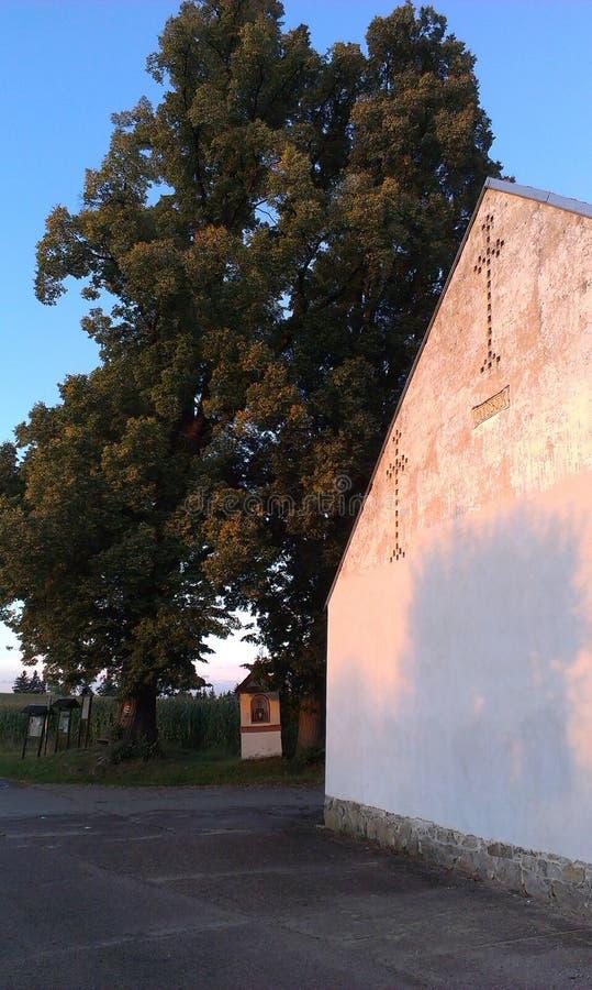 Árbol del granero y de tilo imagen de archivo libre de regalías