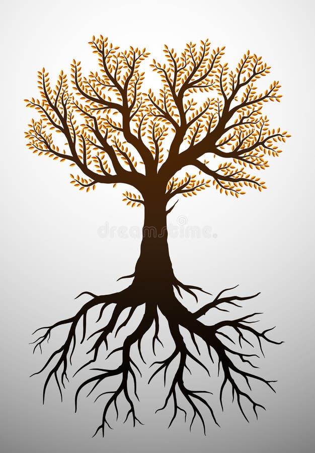 Árbol del otoño y sus raíces ilustración del vector