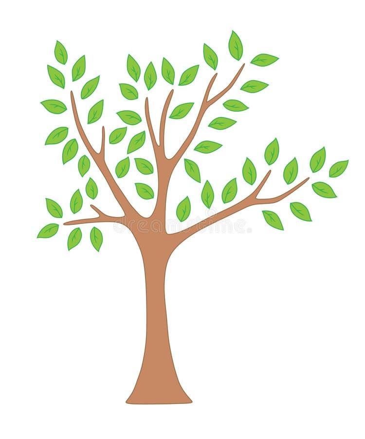 Árbol del resorte con las hojas ilustración del vector