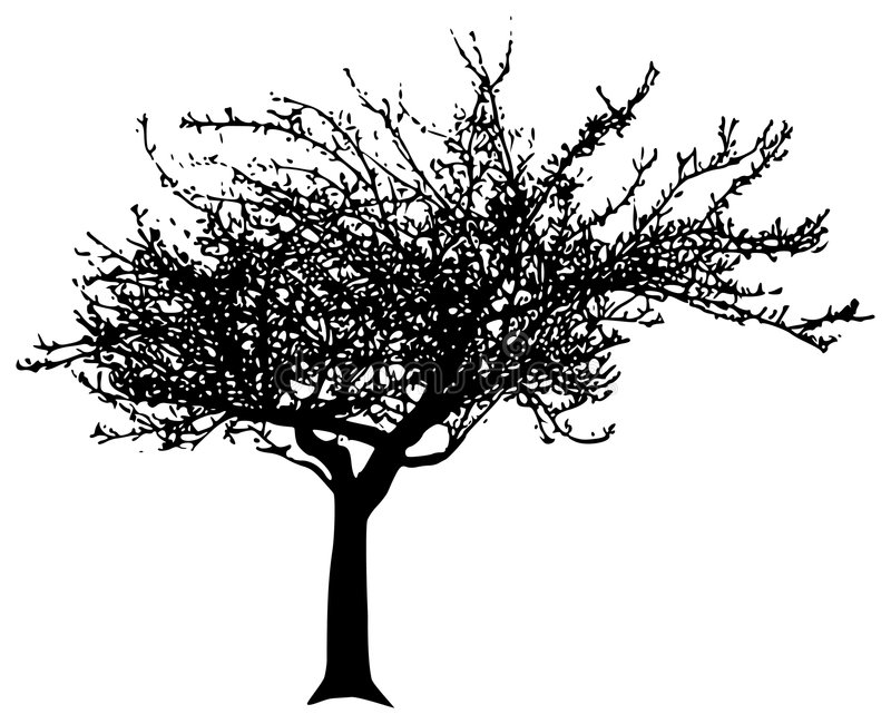 Árbol del vector libre illustration