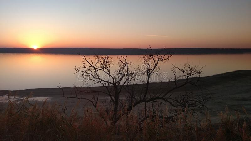 Árbol desnudo solo en los rayos de la puesta del sol fotos de archivo libres de regalías