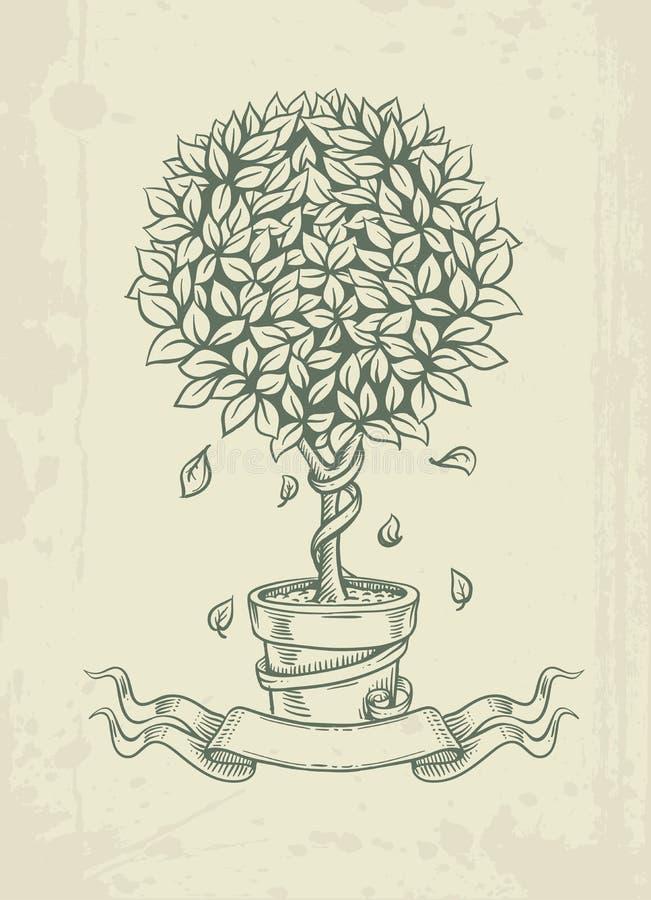 Árbol dibujado mano del vintage con las hojas que caen stock de ilustración