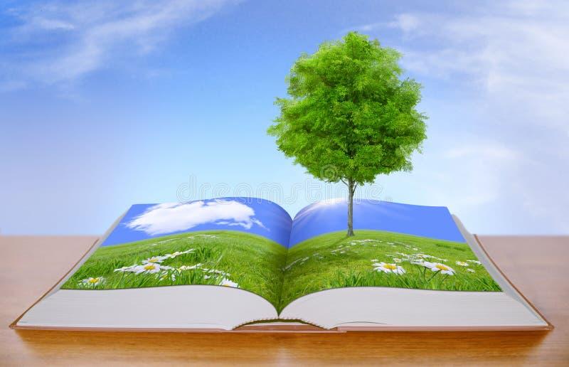 Árbol en prado verde imagen de archivo