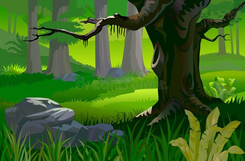 Árbol en un bosque tropical ilustración del vector