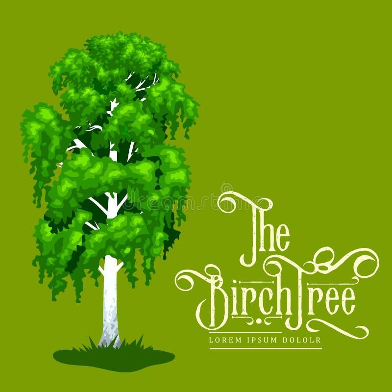 Árbol en un icono blanco del fondo, parque al aire libre del verano del abedul de la historieta con la rama, hojas en vector de l stock de ilustración