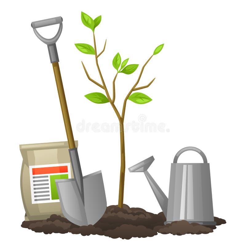Rbol frutal del alm cigo con la pala los fertilizantes y for Arbol para llave de regadera