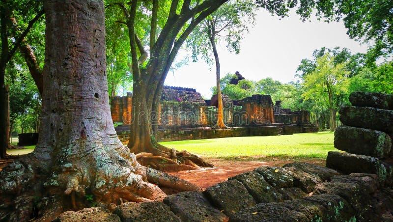 Árbol grande en el prasat muangsing el parque histórico en Kanchanaburi, Tailandia fotografía de archivo libre de regalías