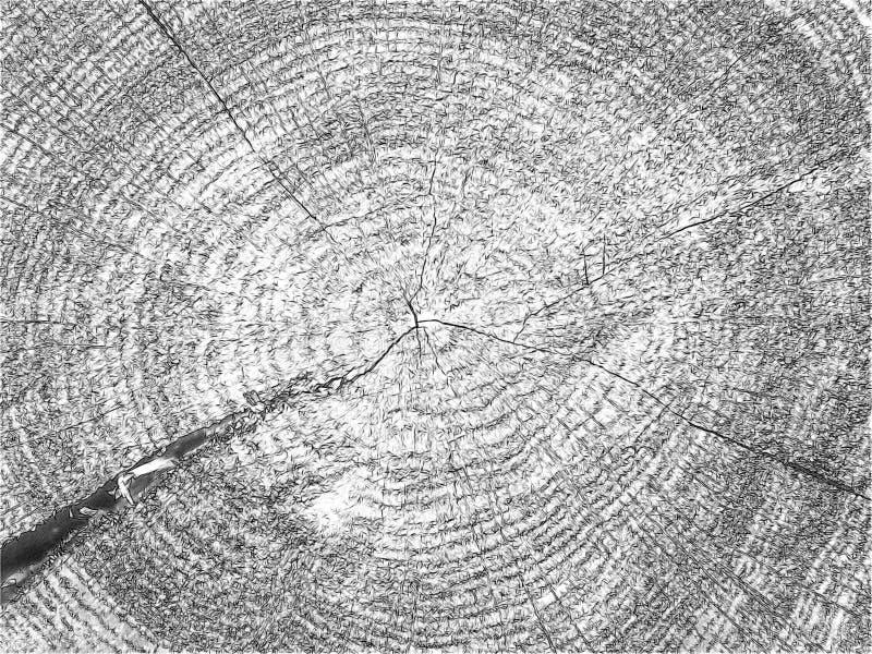Árbol hermoso de Brown en un corte libre illustration