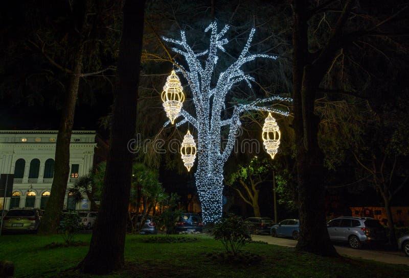 Árbol iluminado en un parque público en el tiempo de la Navidad, Italia fotografía de archivo libre de regalías