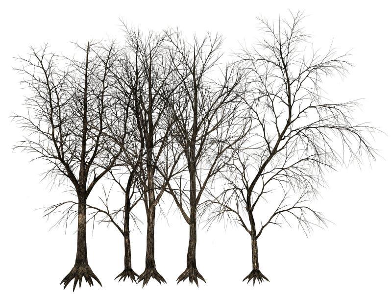 Árbol muerto, ejemplo de los árboles libre illustration