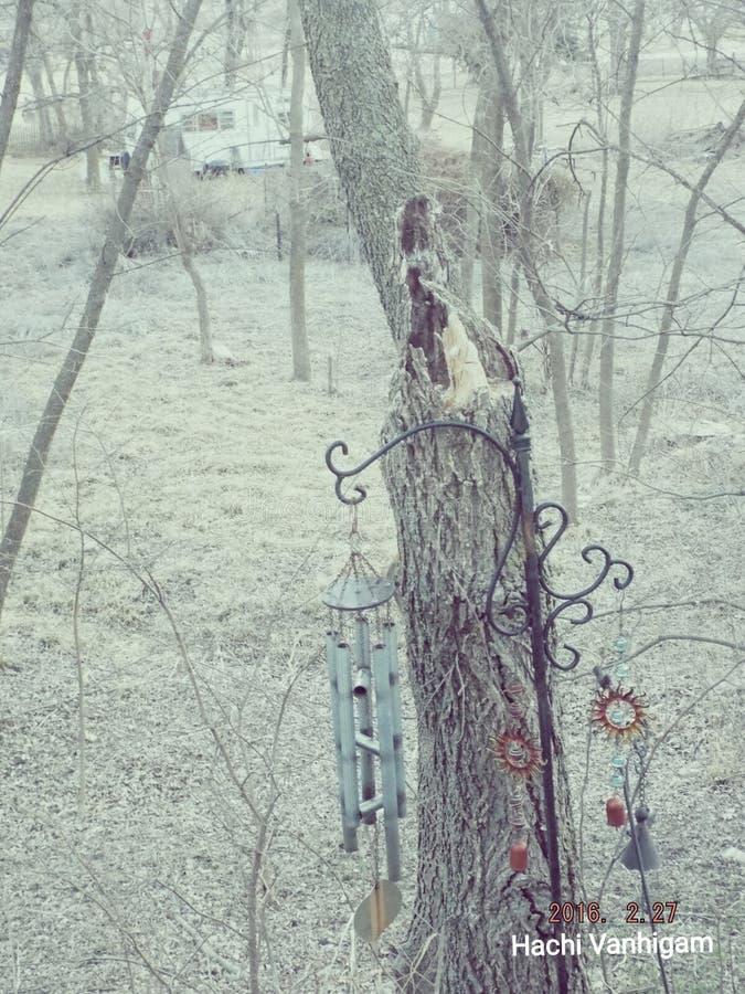 Árbol pegado tormenta fotografía de archivo