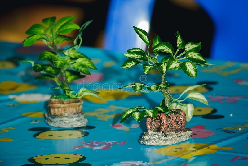 Árbol plástico en el florero colocado en la tabla foto de archivo libre de regalías