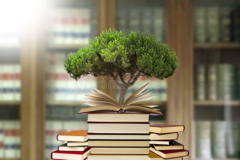 Árbol que crece en abierto-libro imágenes de archivo libres de regalías