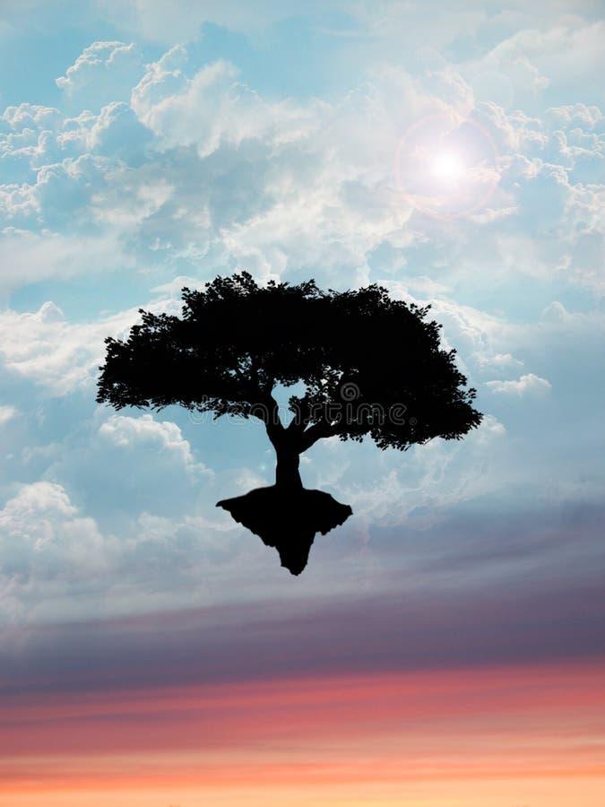 Árbol que flota en cielo   imagenes de archivo