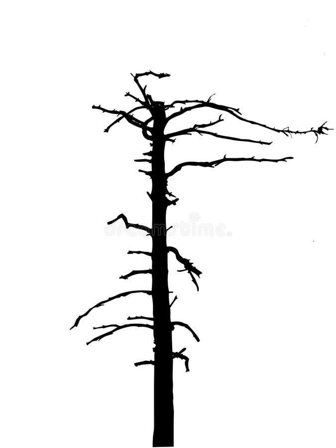 Árbol seco de la silueta libre illustration