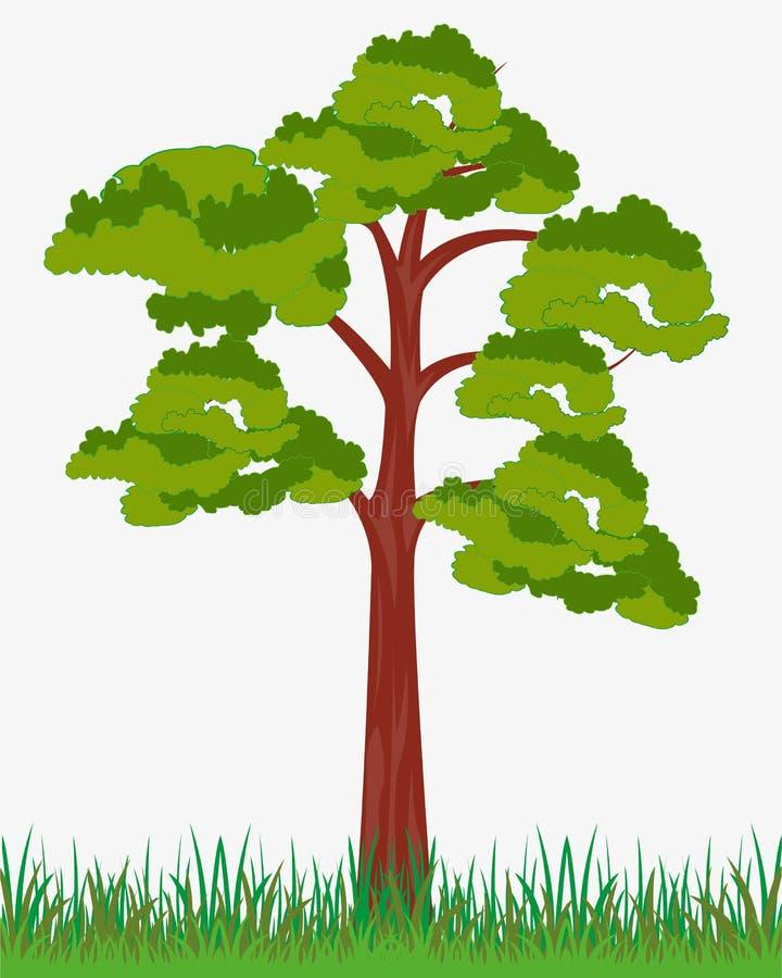 Árbol solitario en blanco ilustración del vector
