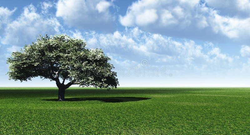 Árbol solo stock de ilustración