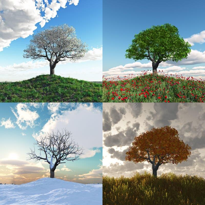 Árbol solo en el lapso de tiempo de cuatro estaciones ilustración del vector