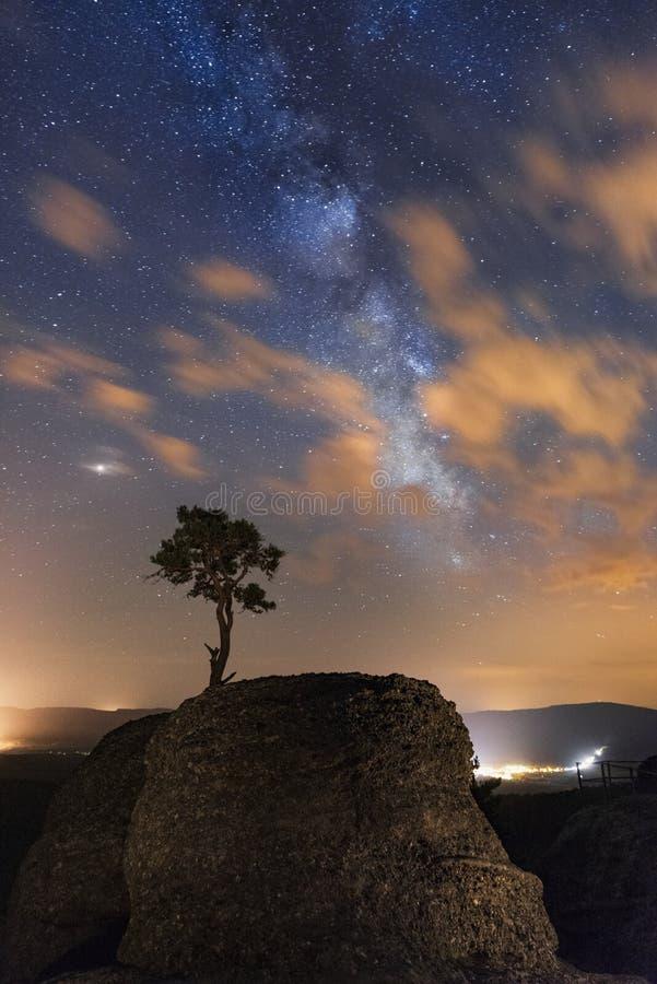 Árbol solo iluminado en el rock debajo del cielo nocturno lleno de estrellas y de vía láctea foto de archivo libre de regalías