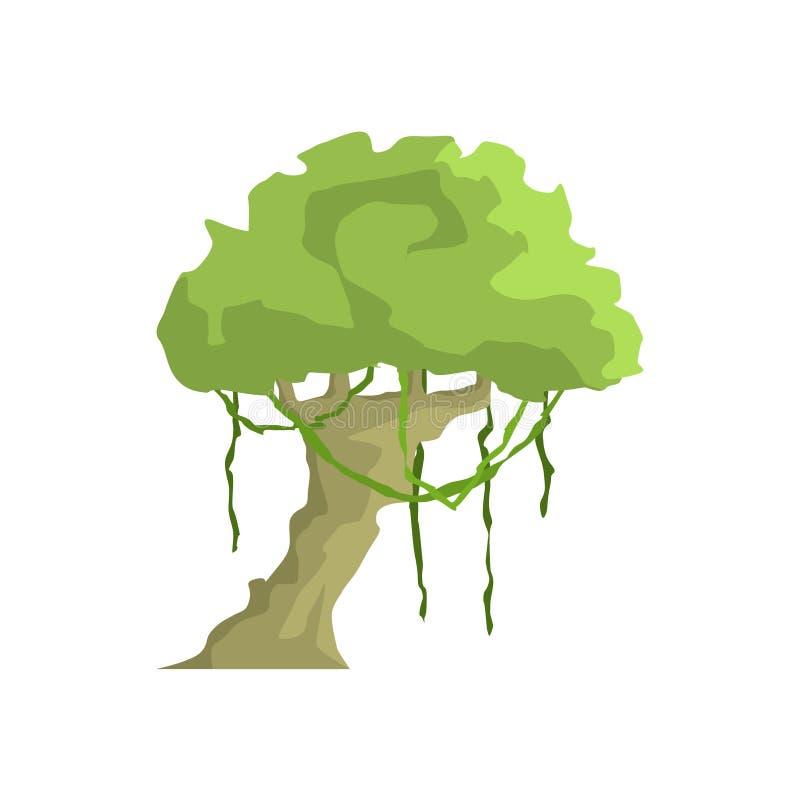 Árbol tropical con Liana Hanging Jungle Landscape Element stock de ilustración
