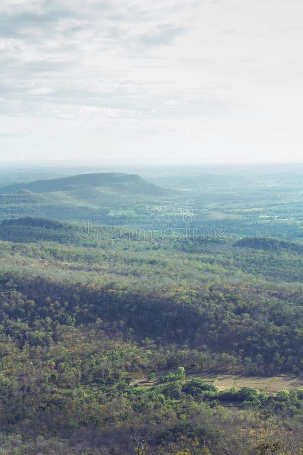 Árbol verde de las montañas del verano y cielo azul fotos de archivo libres de regalías