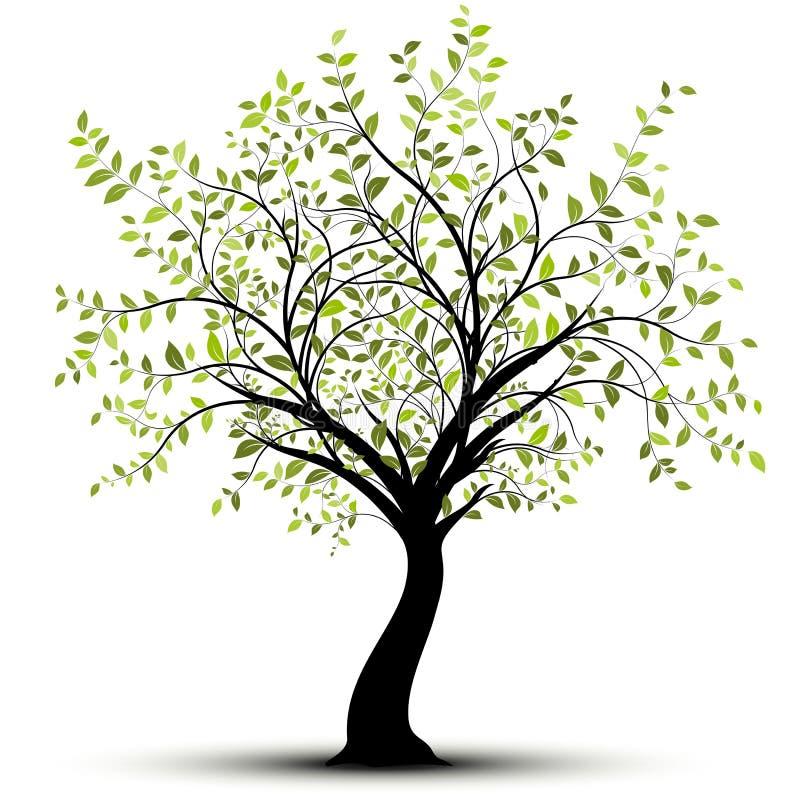 Árbol verde del vector, fondo blanco stock de ilustración