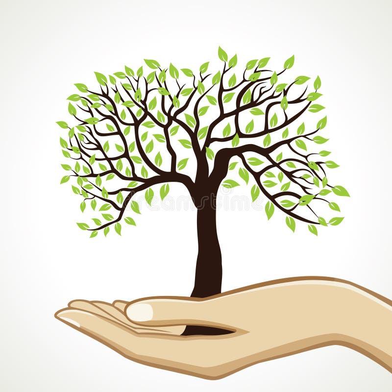 Árbol verde en la mano stock de ilustración