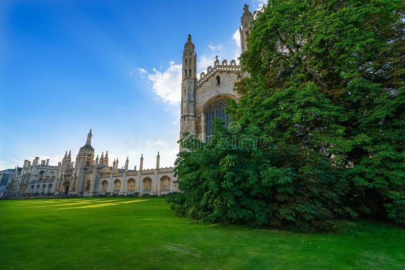 Árbol verde y edificio histórico en el fondo en el día soleado, Cambridge, Reino Unido imagen de archivo libre de regalías