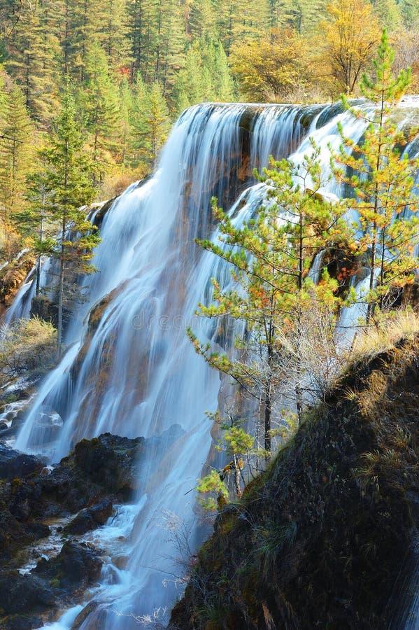 Árbol y cascada del otoño imagenes de archivo