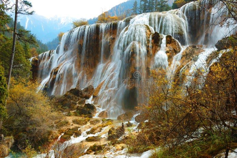 Árbol y cascada del otoño fotografía de archivo libre de regalías