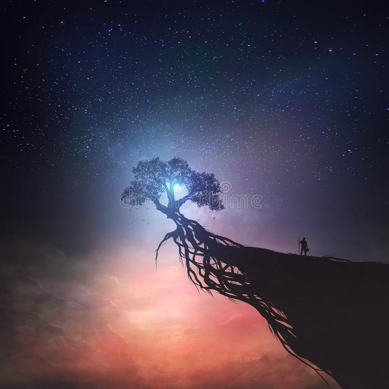 Árbol y cielo nocturno fotografía de archivo libre de regalías