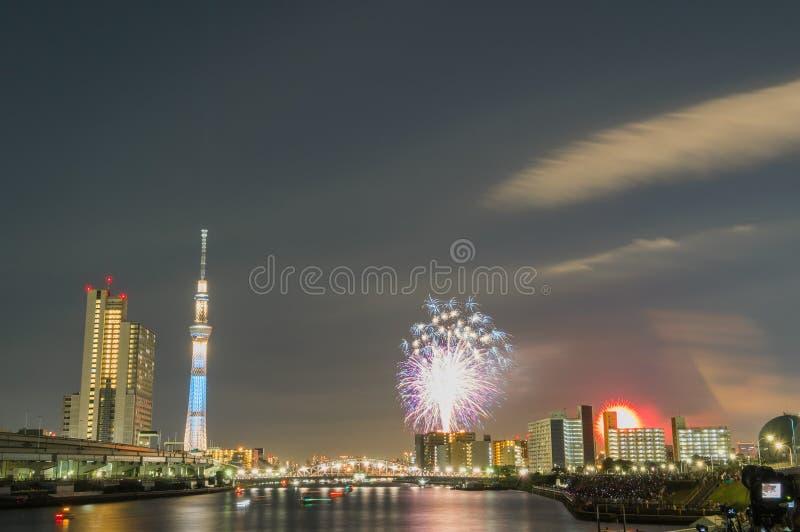 Árbol y fuegos artificiales del cielo de Tokio imagenes de archivo