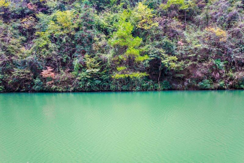 Árbol y lago del otoño fotos de archivo