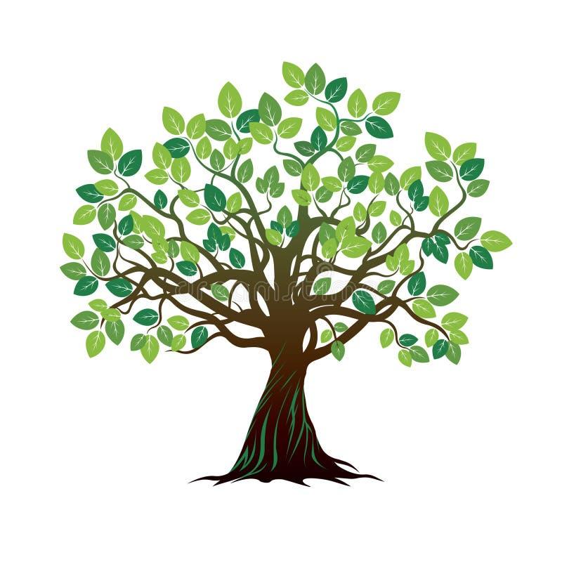 Árbol y raíces del color Ilustración del vector ilustración del vector