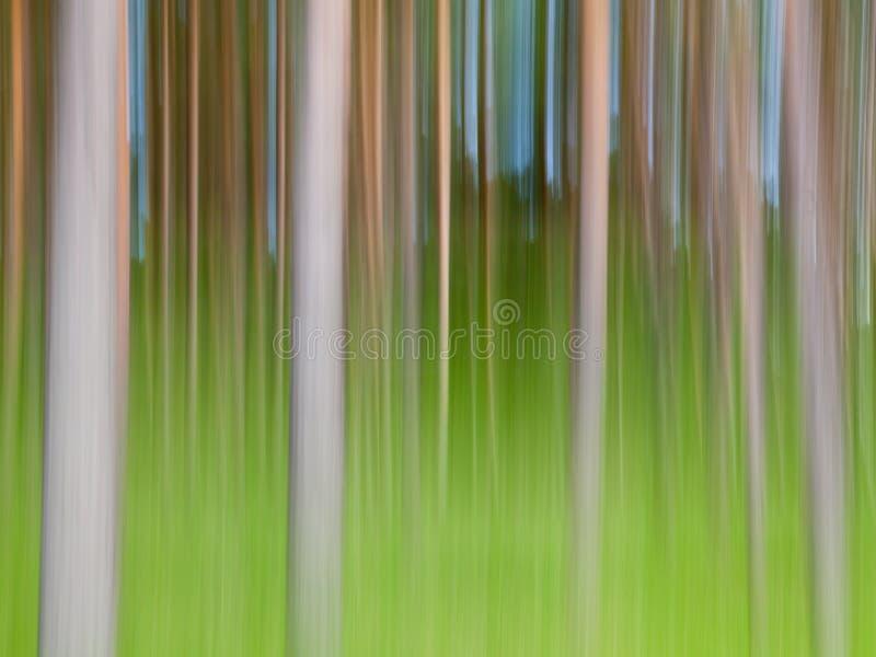 Árboles abstractos imagen de archivo