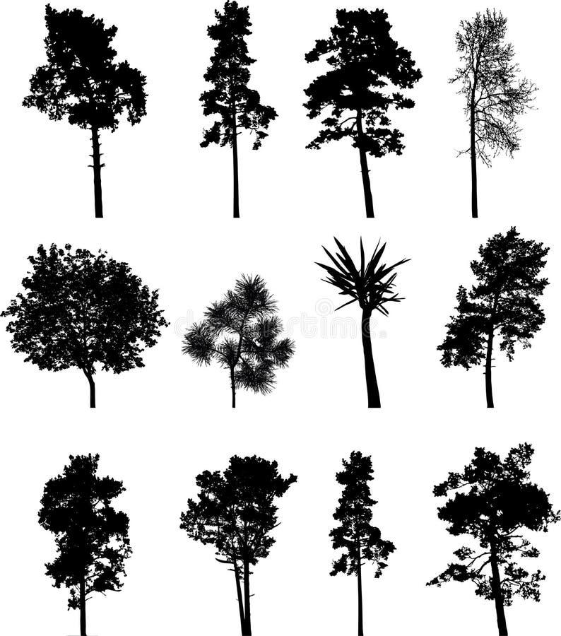 Árboles aislados conjunto grande - 1 ilustración del vector