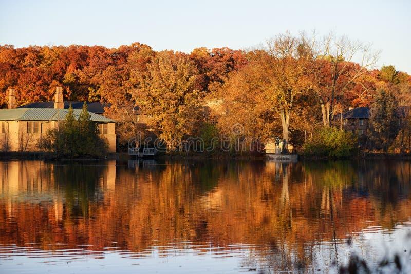Árboles anaranjados con una reflexión en el lago fotografía de archivo
