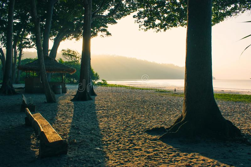 Árboles, banco y una choza en la playa imagen de archivo libre de regalías