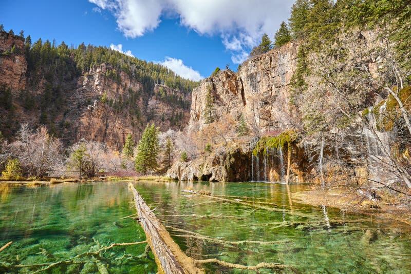 Árboles caidos en el lago hanging, Colorado, los E.E.U.U. fotos de archivo