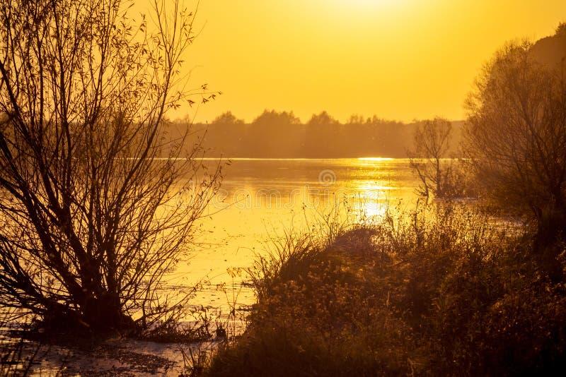 Árboles cerca del río durante la puesta del sol, paisaje en colors_ caliente del otoño imagen de archivo libre de regalías
