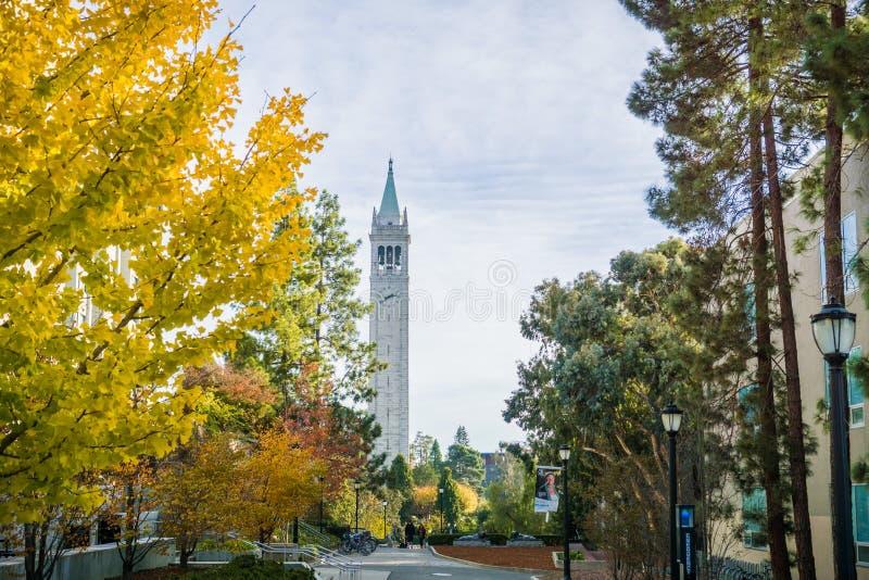 Árboles coloreados otoño en el campus de Uc Berkeley foto de archivo
