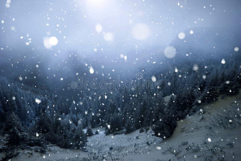 Árboles cubiertos con la escarcha y la nieve en montañas del invierno - Chri fotografía de archivo